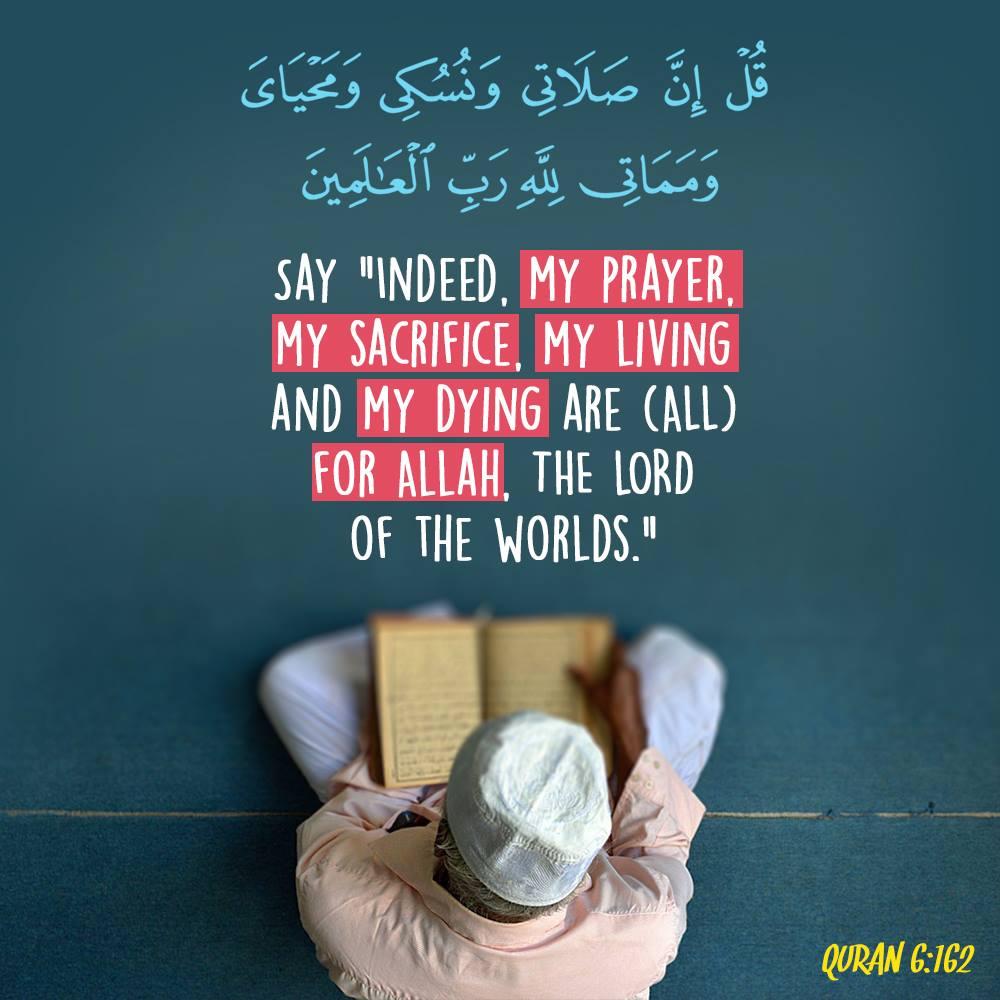 Quran 6 162